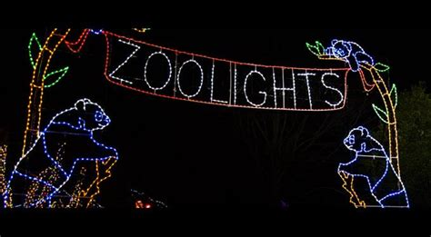 Zoo Lights South Florida Finds Zoo Miami Zoo Lights