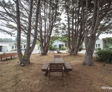 shoreline cottages updated 2018 prices hotel reviews