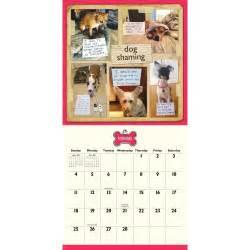 Calendar 2018 Dogs Shaming 2018 Wall Calendar 9781449485160