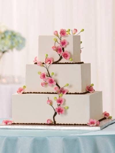 Best 25  Publix wedding cake ideas on Pinterest   Wedding