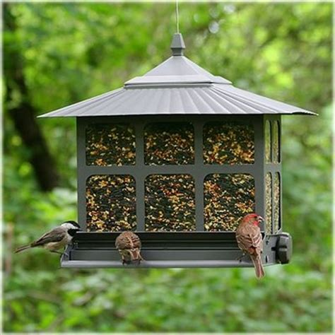 88 best images about squirrel proof bird feeders on