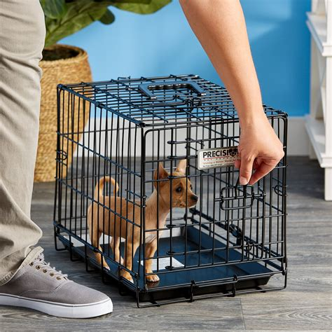 chewy crates precision pet products great crate door crate x small chewy