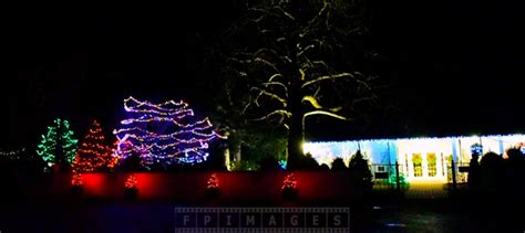Lights Outdoor Decorations by Enjoy Lights Decorations At
