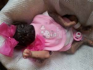 reborn pugs for sale cutest pretty reborn baby pug puppy new princess top artist sale