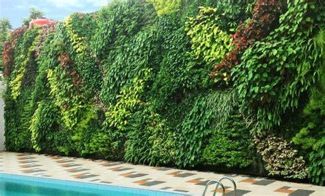 Jual Bibit Rumput Jepang Bandung jasa tukang kolam minimalis relif cadas air terjun