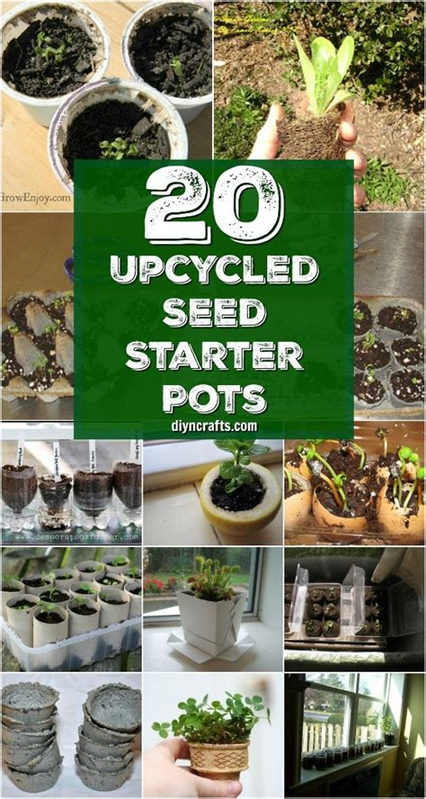 upcycled seed starter pots   easily   home
