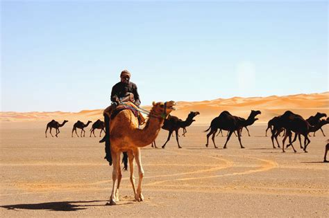 0008127433 the crossing place a journey arabian peninsula