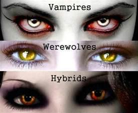 wolf eye color vires werewolves hybrids werewolves