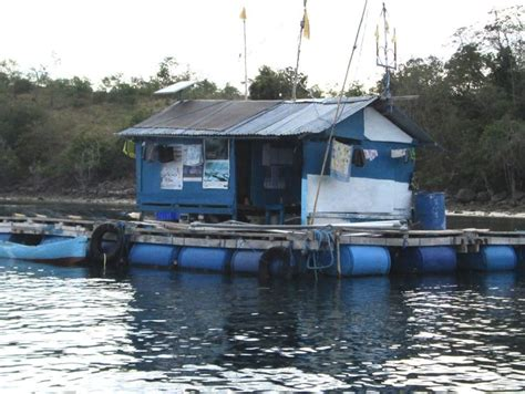 floating boat island floating island boat google search real estate