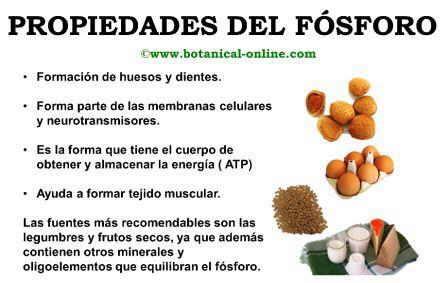 alimentos q contienen fluor 191 f 243 sforo para el cerebro foro per 250 educa