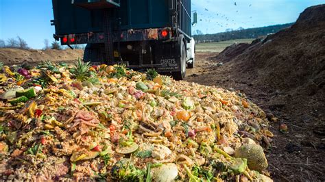 into the food engineers transform food waste into green energy room