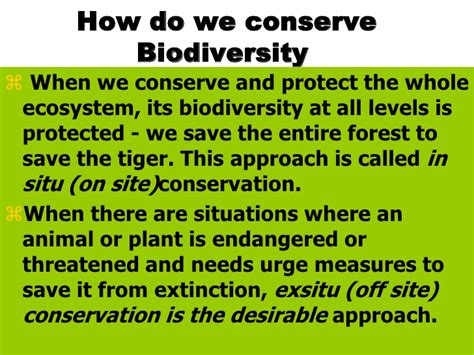 Biodiversity Essay Topics by Biodiversity Essay Topics Application Architecture Construction Dissertation History Cover
