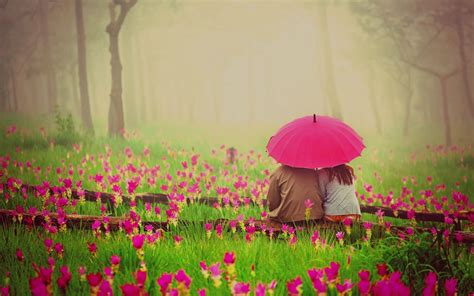 wallpaper romantic pink 50 best romantic pictures to show your love