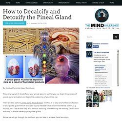 How To Detox Pineal Gland by Cerveau Anatomie Pearltrees