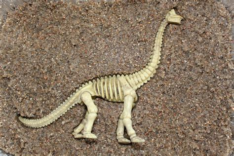 Motion Sand Mould Dino dinosaurs