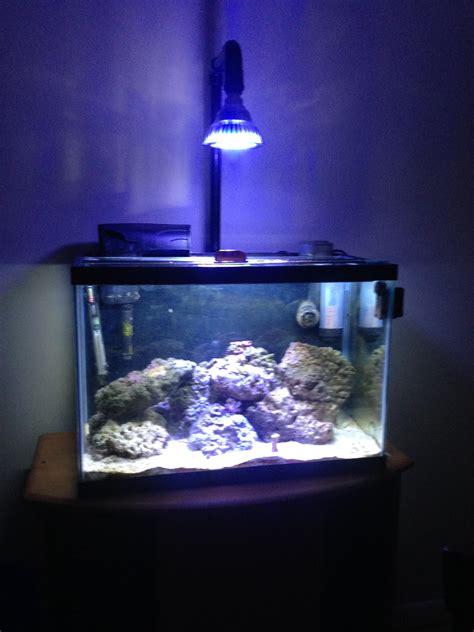 Nano Reef Light Fixtures Par38 Led Diy Fixture My 20g Lighting Forum Nano Reef Community
