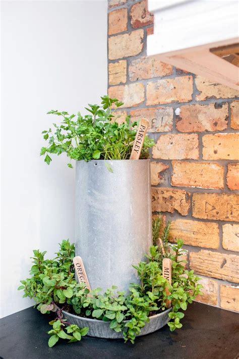 indoor herb planters best 25 chicken feeder decor ideas on pinterest