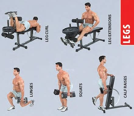 ironmaster bench home singapore
