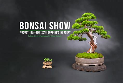 descargar bonsai masterclass all you need to know about creating bonsai from one of the worlds top experts libro e four seasons bonsai club of michigan