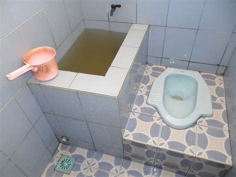 Tirai Toilet bad tripping to crap the low on big