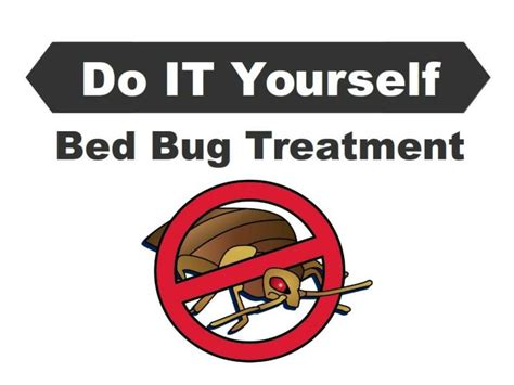 diy bed bug treatment ppt do it yourself bed bug treatment powerpoint