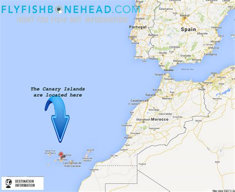 canary islands map canary island location on world map canary island tour elsavadorla