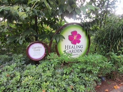 healing garden tour singapore botanic gardens