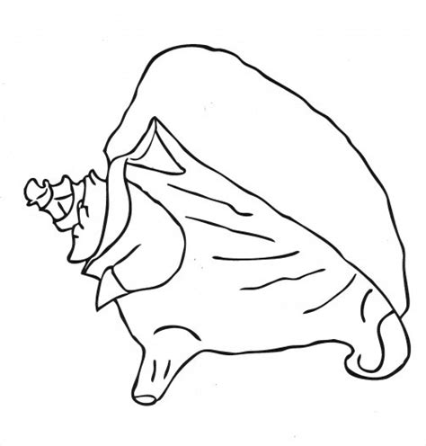 queen conch coloring page simple conch shell coloring colouring pages sea turtle