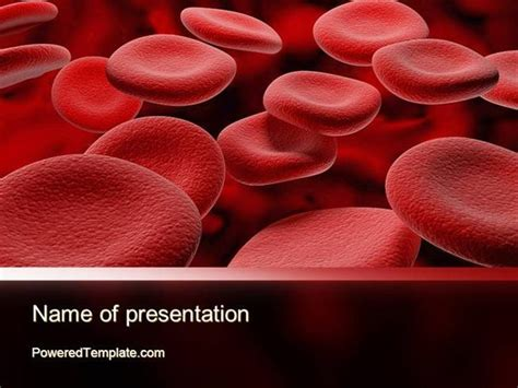 rbc cells powerpoint template by poweredtemplate com