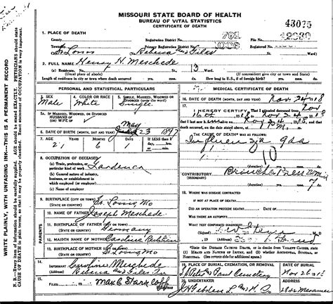 St Louis Missouri Birth Records Record Henry Herman Meschede