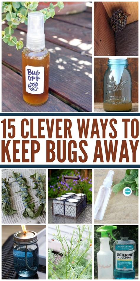25 best ideas about keep bugs away on