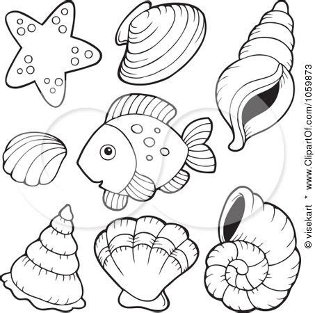 seashell coloring pages preschool 63 best quilting ocean theme images on pinterest pointe