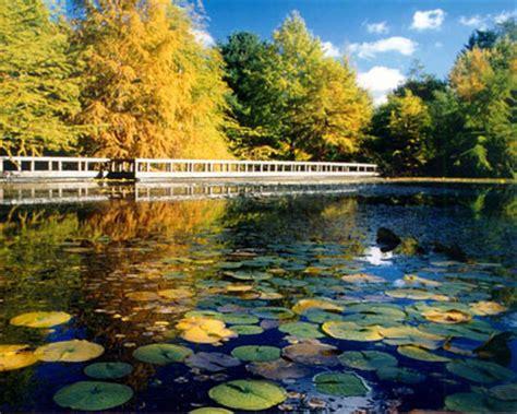 Botanical Garden Vancouver Vandusen Botanical Garden