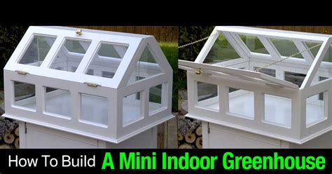 how to build a mini indoor greenhouse