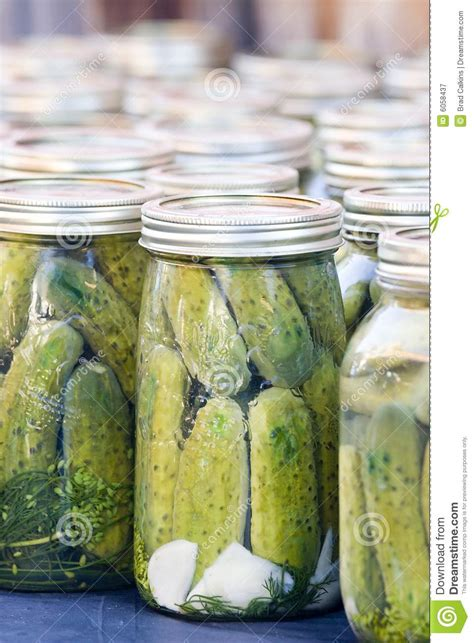 Handmade Pickles - pickles stock image image of storage pickling