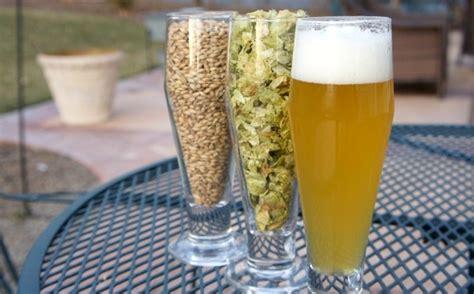 come fare la birra in casa senza kit come fare la birra in casa dissapore