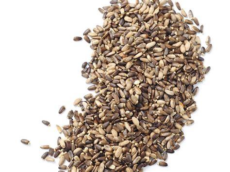 milk thistle seed silybum marianum seed extract bio botanica
