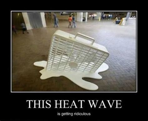 Heat Meme - 35 best images about heat wave on pinterest swim lessons