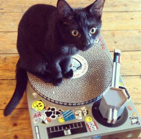 cat scratch dj deck cat scratching dj deck by thelittleboysroom