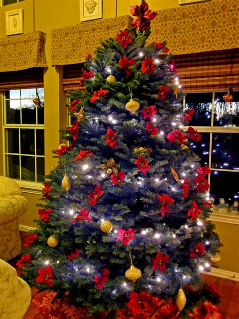 christmas trees for sale in frisco tx at christmas traditions