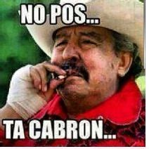 Pos Ta Cabron Meme - no pos ta cabron mexican problems pinterest