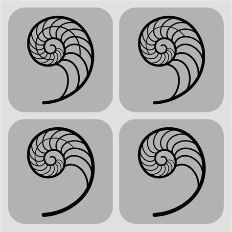 nautilus shell tattoo designs best 25 nautilus ideas on fibonacci