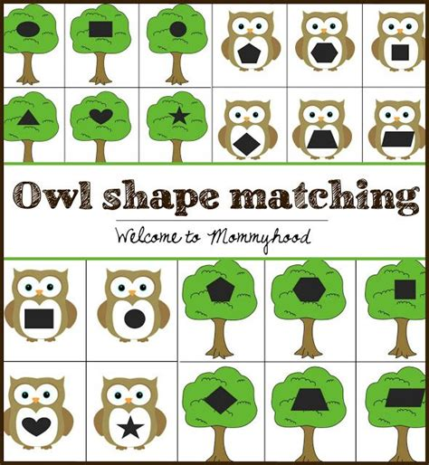 owl printables for kindergarten free owl shape matching printable bird crafts and