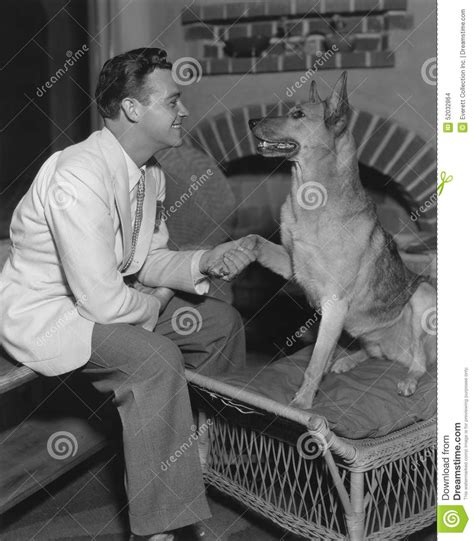 how to your to give you paw give me your paw stock photo image 52032864