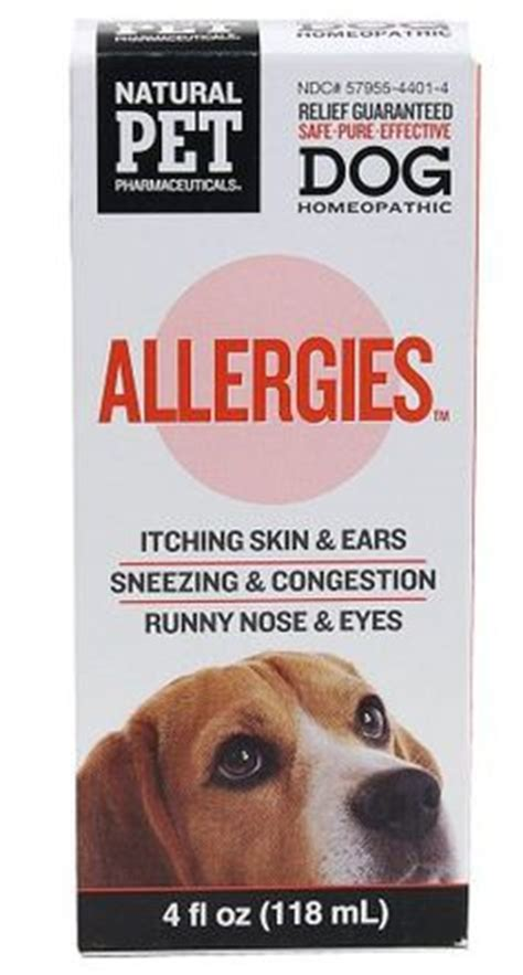 skin allergies home remedies skin allergies on allergies in dogs dogs and your