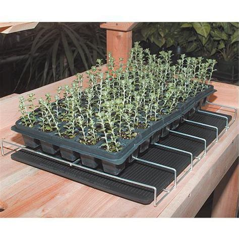 Germination Mat by Heating Mat For Germination 22 Quot X 60 Quot Images Frompo