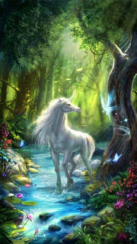 unicorn  wallpaper white unicorn   fairy forest