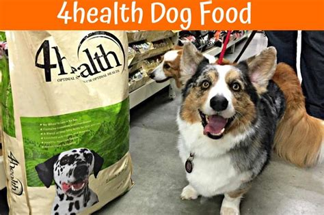 4health grain free puppy food 4health cat food rating cats