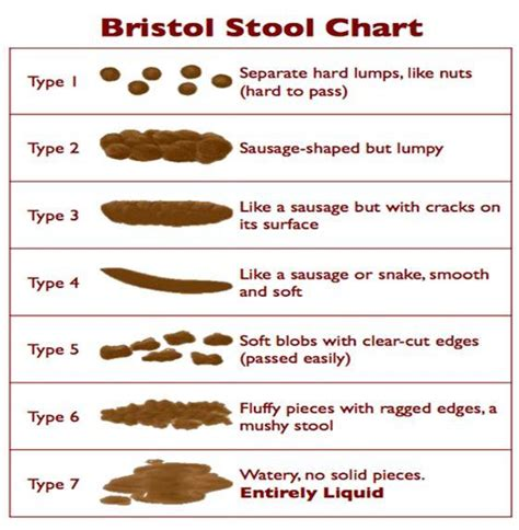 Human Stool Types by Constipation Infonet Biovision Home