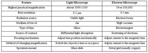 Difference Between Light Microscope And Electron Microscope by Difference Between Light Microscope And Electron